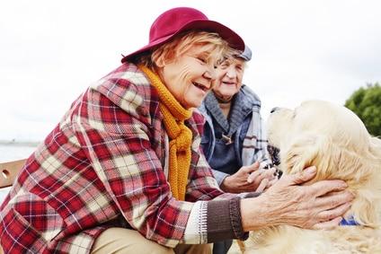 senior-retraite